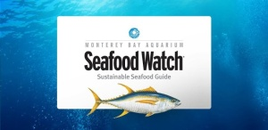 Seafood Watch phone app